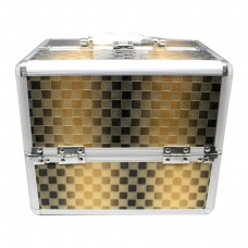 Beauty Case (Black and Gold)
